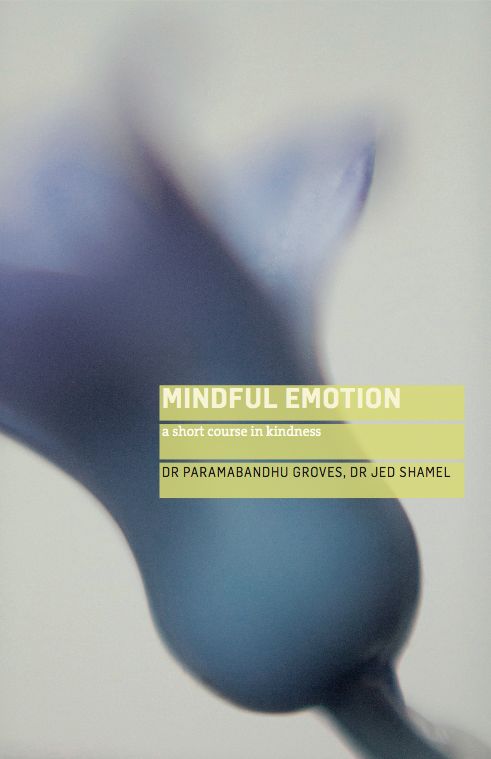 Mindful Emotion Book